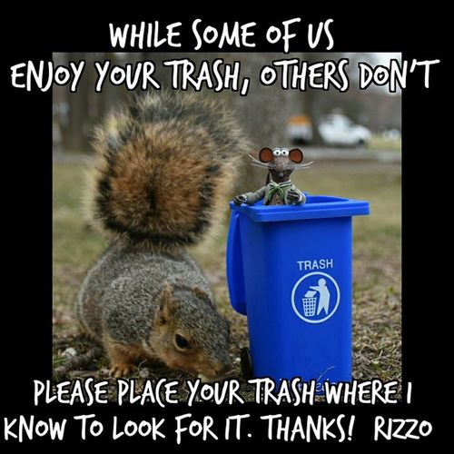 Stop cluttering up our parks and beaches. PitchItIn PickUpAfterYourself KeepMichiganBeautiful AdventuresOfRizzo