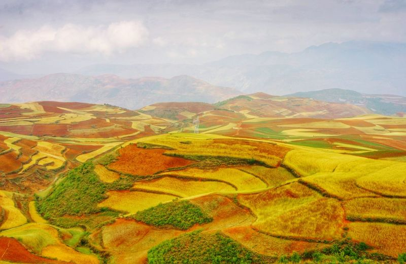 Yunnan China Landscape China Rice Paddy Terraced Field Rural Scene Multi Colored Cereal Plant Tree Beauty Agriculture Hill Rice - Cereal Plant Plantation Agricultural Field Cultivated Land Patchwork Landscape Cultivated Plowed Field Mountain Range Satoyama - Scenery