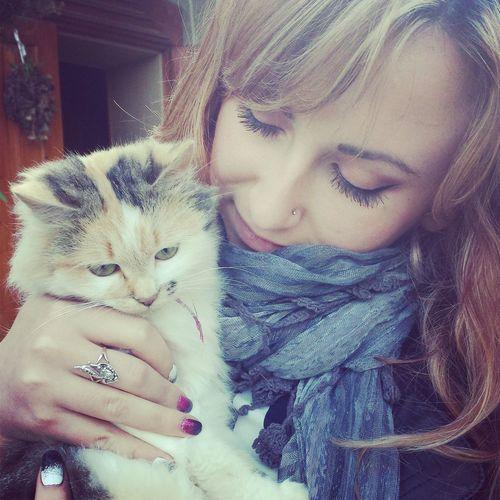 Cat Kitty Кицюха Котик