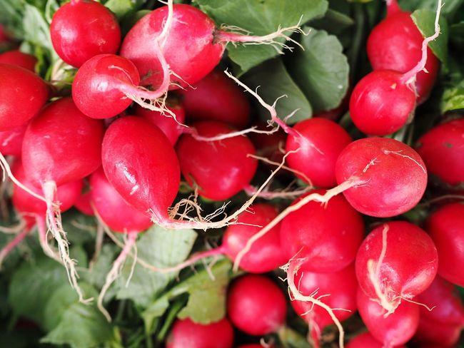 Radishes Radish Red Vegetables Full Frame Close-up Healthy Healthy Vegetables Harvest Healthy Snack