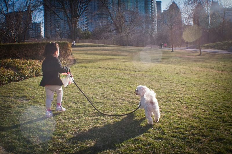 Friendship. EyeEmToronto Child Photography Childhoodunplugged Childhood Memories Dog Walking The Dog Park Parkscapes