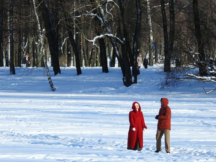Леди ин ред Ice Lake In Ice Lake Colors Of Sankt-Peterburg Sankt-peterburg Sankt-Petersburg Russia Snow ❄ Snowing Park Sunnyday☀️ Snow Winter Cold Temperature Full Length Red Togetherness Nature People Day Beauty In Nature Warm Clothing Tree Colour Your Horizn