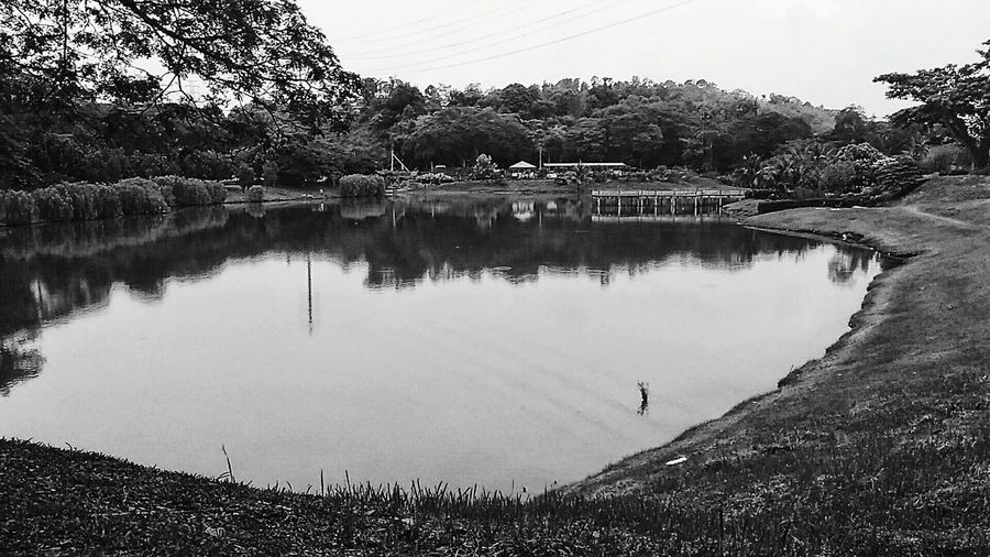 Reflection Rural Scene Lake Water Nature Outdoors Tree Landscape Agriculture Day Sky Beauty In Nature Asus Malaysia Snapseed Popular Photos VSCO Scenics Tranquility Photography Zenfonemax Zenfonemalaysia Vscodaily Photooftheday Zenfone