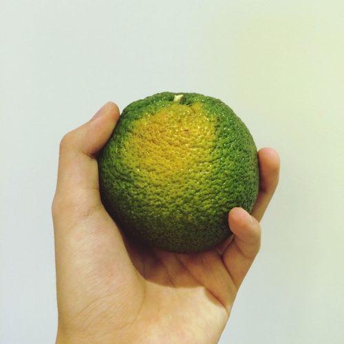 Hi new here would u wanna an orange? MakeFriends