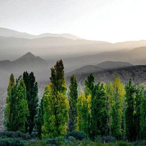 Famatina Larioja Argentina Mountain Nature dotspin
