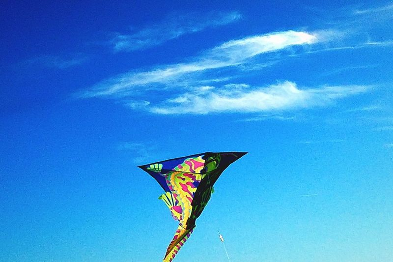 Flying In The Sky Blue Mid-air Sky Wind Flying Outdoors Day Leisure/Relax Kite In The Sky Recreational Activity Clear Skies First Signs Of Spring Gecko Lizard In Sky Wind Blowing  Air Soaring Fun Looking Upward Avenal, California The Hills Fun Things To Do Family Fun Multi Colored