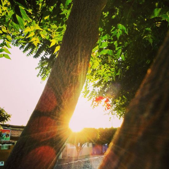Não importa o que aconteça o sol sempre vai brilha.