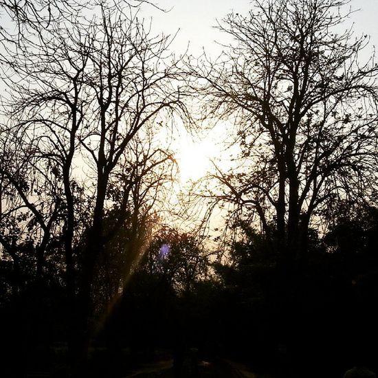 Be pure like a reflection of water. Pakistan Pakistani Paki Pakistanithings LessonLearned Life Sunset Beauty Plants Naturelovers Nature Discoveringpakistan Wheninpakistan 12amphotos Thisisalsopakistan Exhibitpakistan Vascopakistan Bestshot Bestpic Picofday