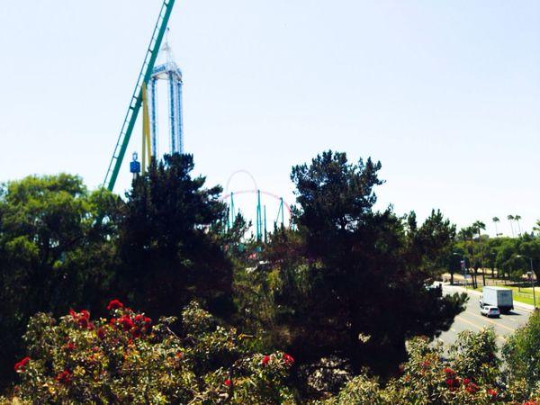 Knotts Berry Farm Amusement Park Rides View Iphone 5