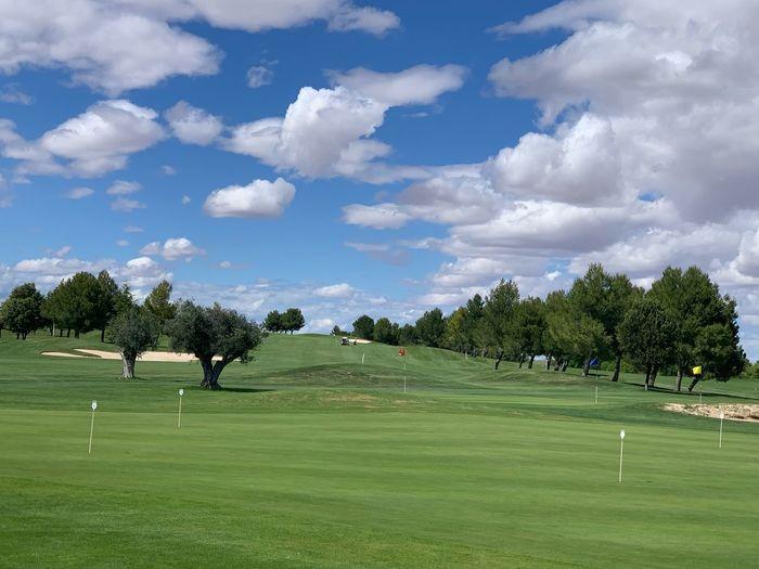 Golf Club Plant