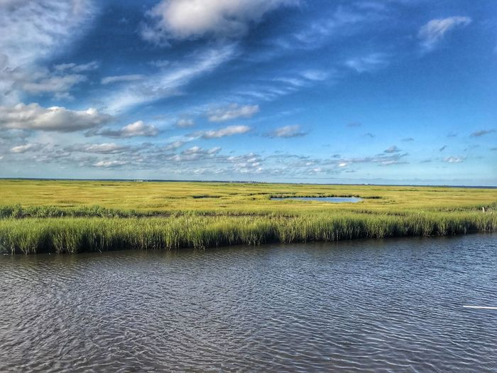Tranquil Scene Beauty In Nature Tranquility Sky Scenics Landscape Nature Agriculture Field Rural Scene No People Day Cloud - Sky Outdoors Growth Water Grass