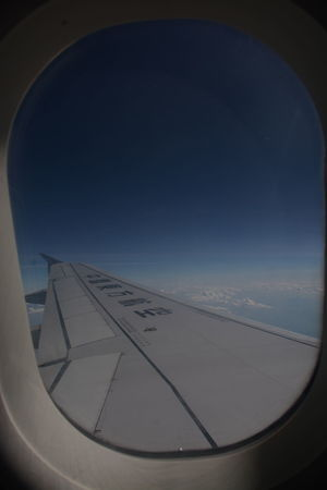 Sky Plane InTheSky High Angle View Nature