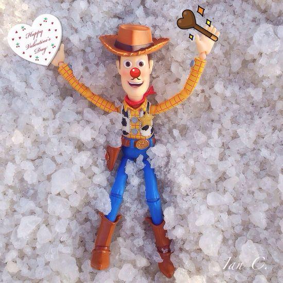 Whiteday Woody Valentine Toys ?white day?
