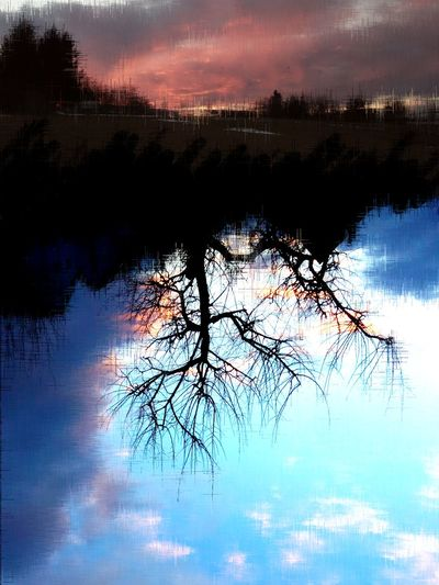 My Own World  From My Point Of View Bildmanipulation Phantasy City Spiritual Myworld Sunset Silhouettes Silhouette Heaven Surreal Tree