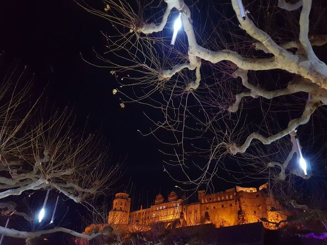 Wintertime Heidelberg Heidelberg Castle Heidelberg Old City Card Design Scenics Focus On Light And Shadow Perspektive Personal Perspective Outdoors Outdoors Photography Beauty In Ordinary Things Art Photography Art is Everywhere Colorful At Night Christmas Lights Christmas Market Tourism Tourism Destination German Tourism Christmas Around The World Illuminated City Astronomy Star - Space Cityscape Close-up Sky