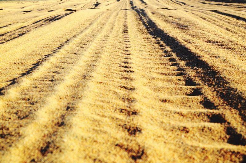 Desert Deserts Around The World Emirates Dubai Track Sand Heat