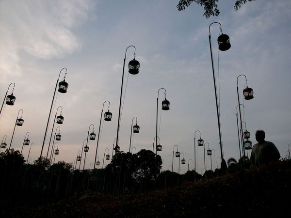 Beauty In Nature Bird Bird Cage Bird Cages Bird Photography Bird Singing Bird Singing Competition Bird Singing Corner Bird Singing Corner Cloud - Sky Day Landscape Low Angle View Nature No People Outdoors Silhouette Sky Tree