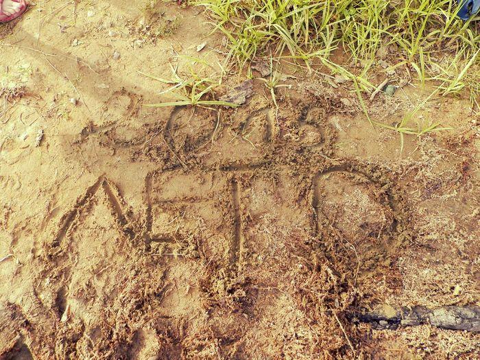 лето 2015  на песочке у берега