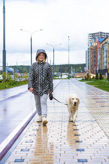 Man with dog walking on zebra crossing