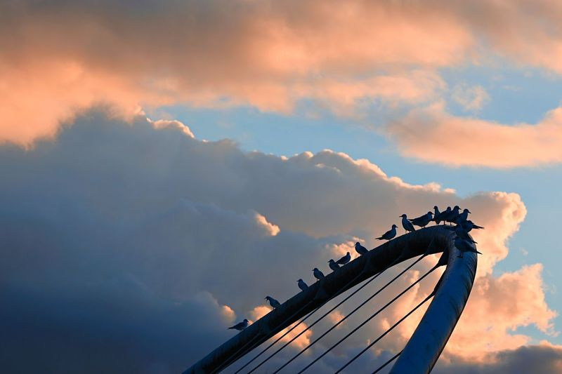 Low angle view of silhouette metallic structure against sky at sunset