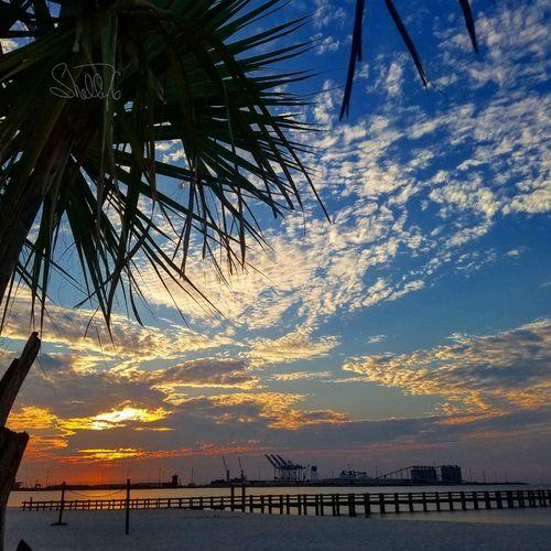 Such a beautiful Ms Gulf Coast sunrise.