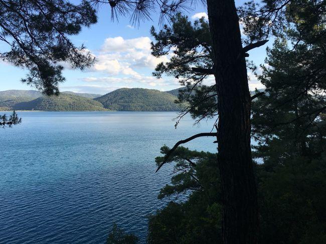Akyaka Ormankampı Doğal Güzellik