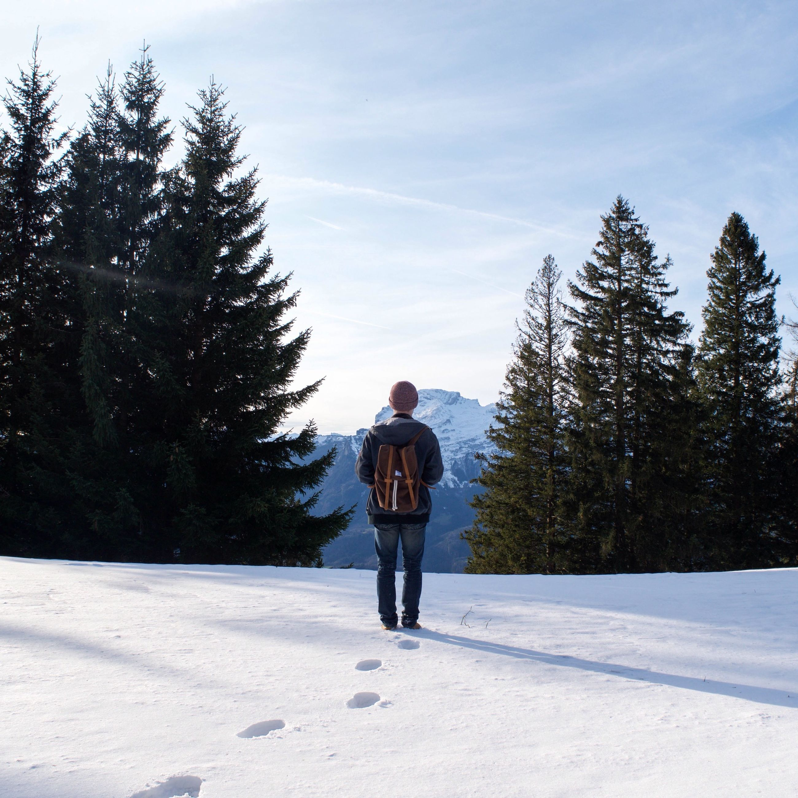 snow, winter, cold temperature, tree, full length, season, rear view, walking, lifestyles, sky, leisure activity, weather, warm clothing, nature, tranquil scene, white color, landscape, tranquility