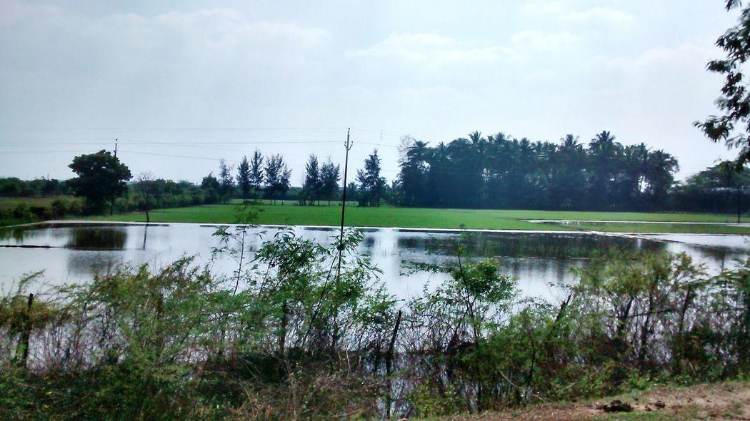 Taking Photos farming land of india