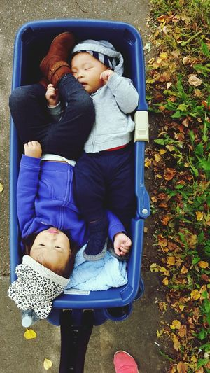 High angle view of siblings in baby stroller