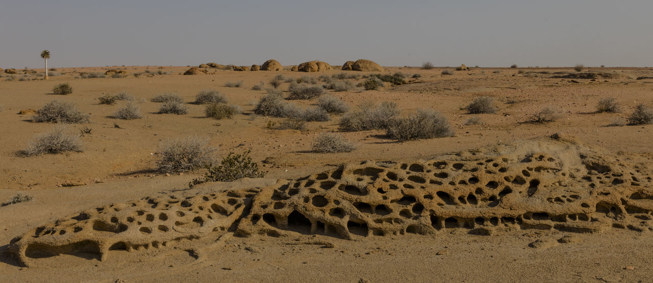 A Rock Formation of Sand Stone in the Naukluft National Park of Namibia Southern Africa Namibia Naukluft National Park Naukluft National Park Landscape Rock Rock Formation Quiver Tree Sky Desert Environment Nature Scenics - Nature Arid Climate Outdoors Vacations Holidays 4wd Terrain