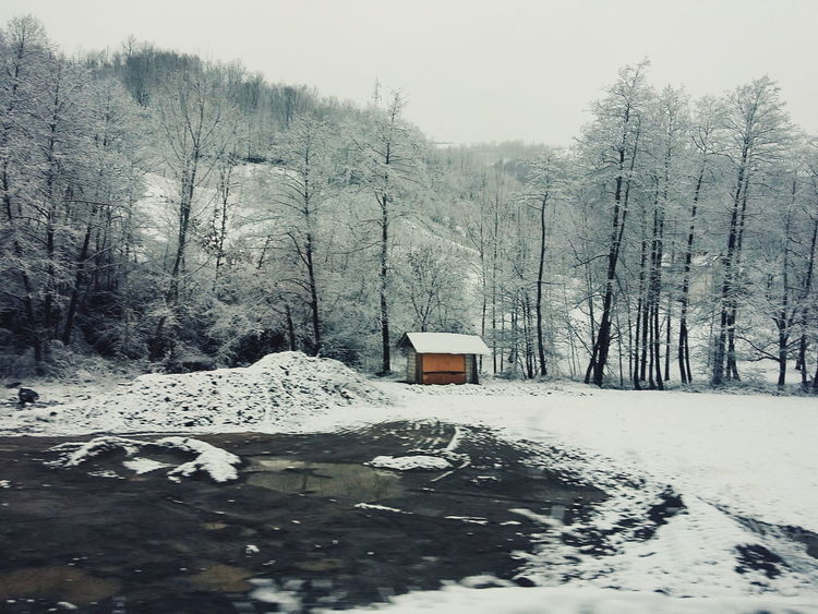 Cold Cold Temperature Covered Covering Day From My Point Of View Frozen It's Cold Outside Landscape Nature Nature_collection Season  Showcase: January Snow Snow Covered Tranquil Scene Tree Weather White White Color Winter Landscapes With WhiteWall