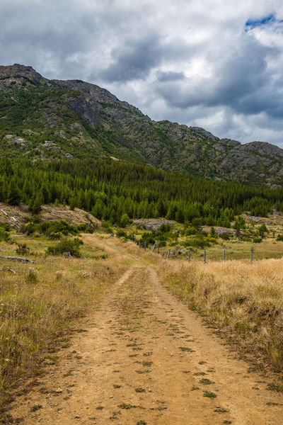 A dirt road in Patagonia, Chile. Chile Hiking Road Travel Beauty In Nature Cloud - Sky Cochrane Day Grass Landscape Mountain Mountain Range Nature No People Outdoors Patagonia Road Scenics Sky South America The Way Forward Tomango Tranquil Scene Tranquility Tree