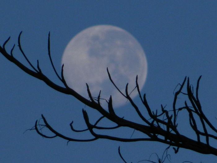 Moon Moon Sky