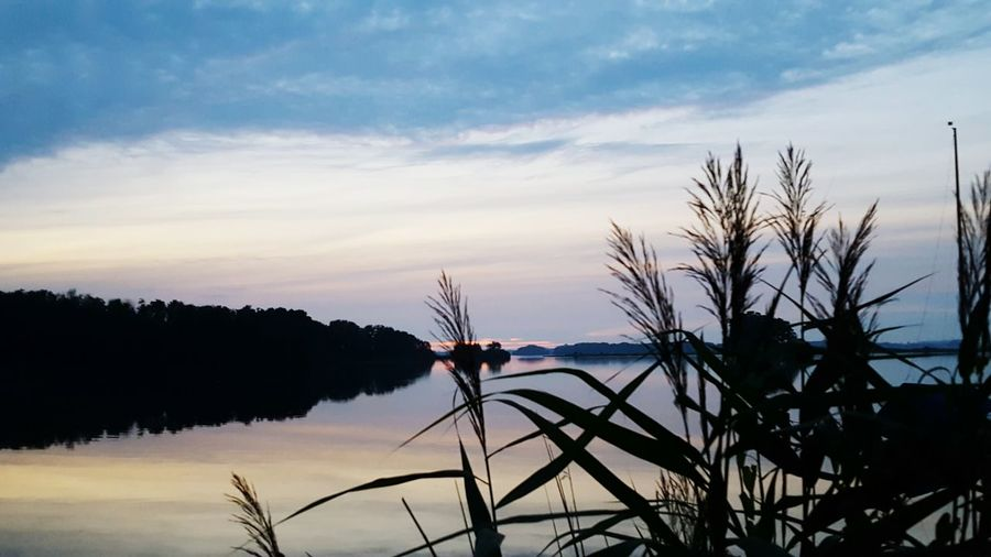 Tree Sunset Silhouette Sky Beauty In Nature Outdoors Water No People Nature Tranquility Tranquil Scene Silence Lake Sea Germany🇩🇪 Einsam Lonlyness Travel Tourism Travel Destinations EyeEm Nature Lover Plöner See