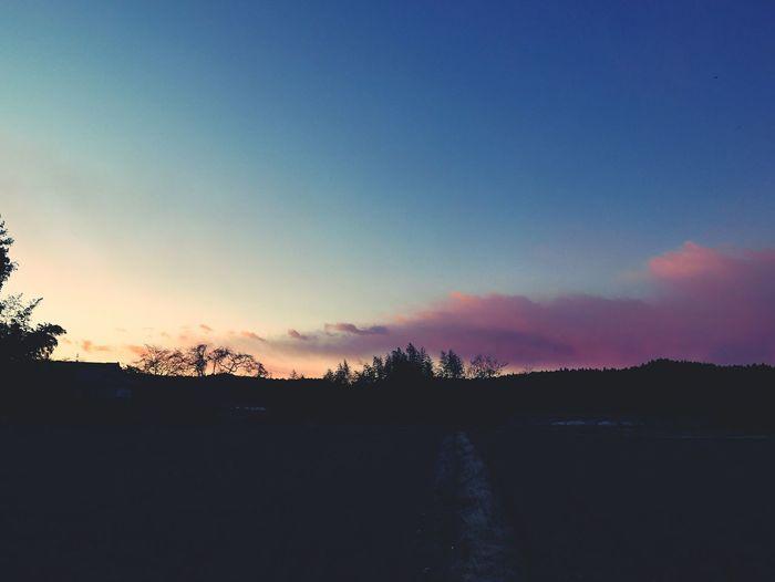 風景 自然 Nature 夕方
