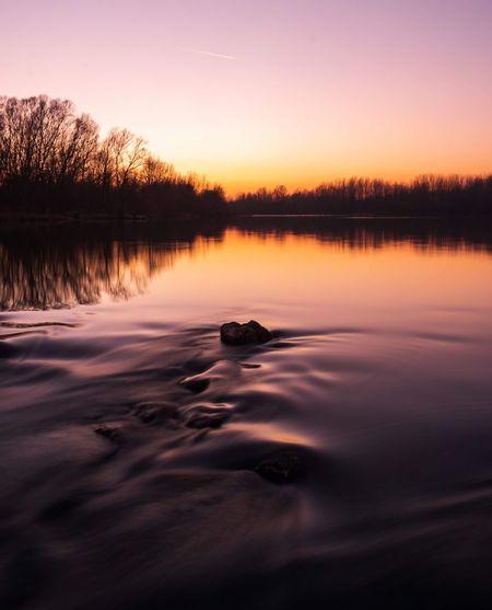 Drava sunset. Water Tree Sunset Lake Reflection Awe Forest Sky Romantic Sky Horizon Over Water Idyllic Silhouette Dramatic Sky Calm