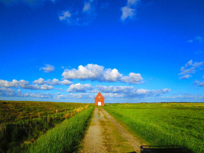Road amidst field against blue sky