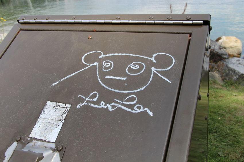Bear Bear Bin Chalk Art Day Deep Cove Graffiti Interesting No People Outdoors Urban Art