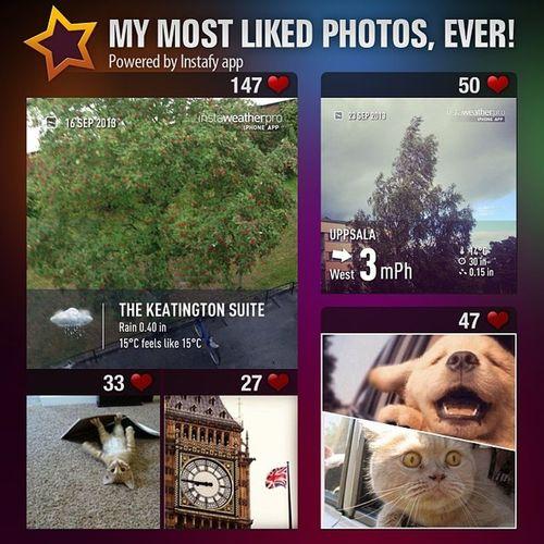My Instagram stats using Instafy app