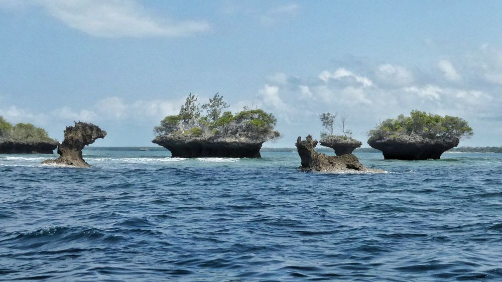 Rocks in the ocean Rock - Object Nature Water Outdoors Beauty In Nature Formed By Water Formed By Wind Rock Formations In The Ocean Blue Sky And Clouds Trees On Rock View From The Boat Kenya Wasini Island Scenic View Scenic Landscapes Travel EyeEm Selects EyeEm Gallery Taking Photos Adventure EyeEm Nature Lover