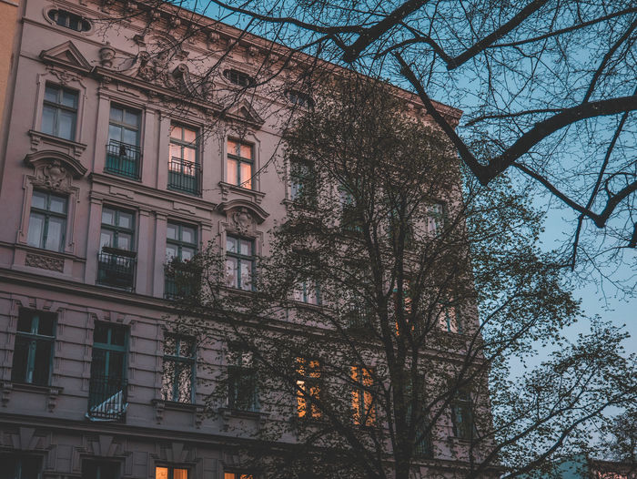 Berlin Elegant Paris Apartment Architecture Bare Tree Branch Building Building Exterior Built Structure City Day Exterior Design Exterior View Low Angle View Nature No People Outdoors Plant Reflection Residential District Sky Spring Tree Window