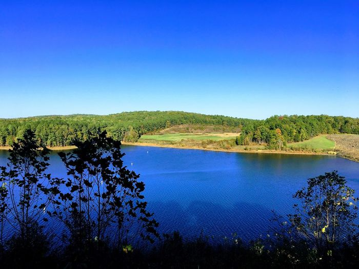 Overlook at Lake Jordan in NC Blue Tranquil Scene Lake Tree Water Nature Tranquility Beauty In Nature Scenics Clear Sky No People Outdoors Growth Landscape Day Sky