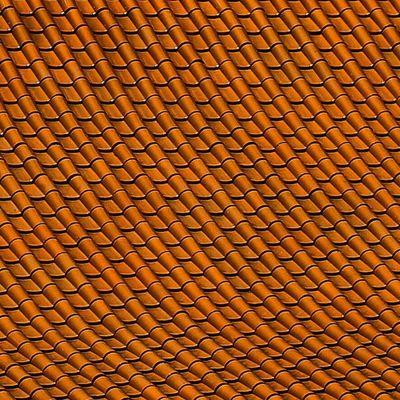Sony Nex Nex5n Skopar 21mm sydney australia nantien buddhist temple roof symmetry