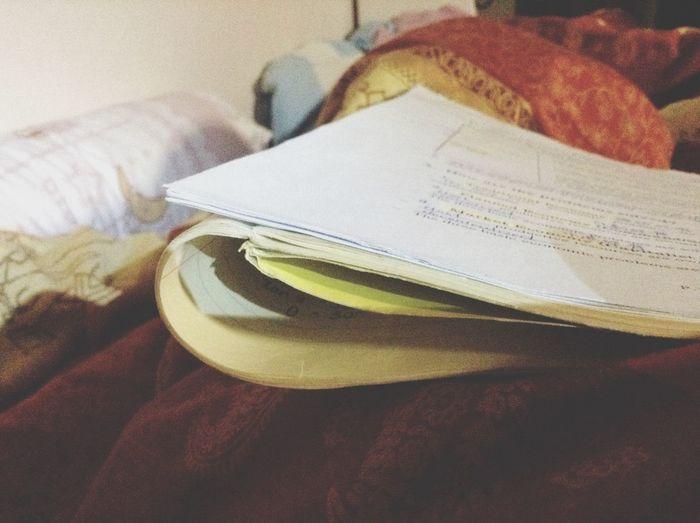 20141213 00:00 Sleeping with economics:) Exam Economics Physicsgg Homesweethome HongKong Sleepy