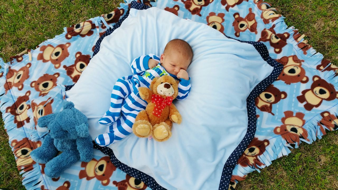 High Angle View Of Baby Boy With Stuffed Toys Resting On Field