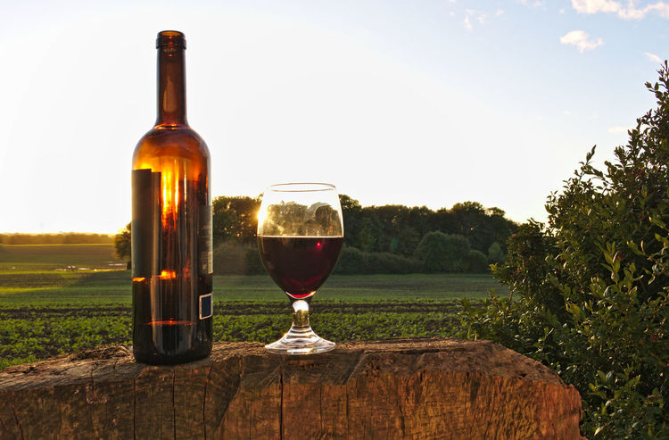 Glass of red wine with bottle on tree stump with green fields, bush and sunset in the background Backlight Field Green Red Wine Reflection Relaxing Bottle Contre-jour Country Life Countryside Enjoying Life Enjoyment Garden Leisure Activity Lush Foliage Outdoors Recreational Pursuit Rural Scene Springtime Summer Sunset Tree Stump Wine Wineglass