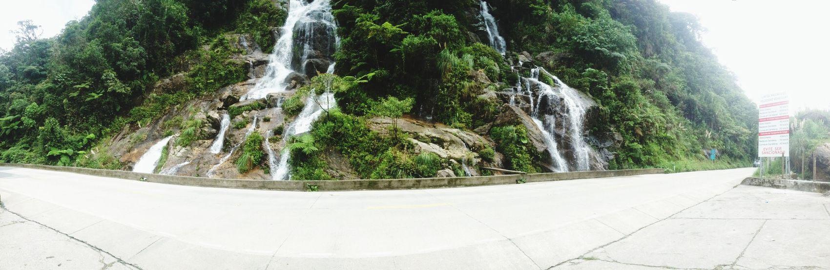 Taking Photos RoadZamoraNature