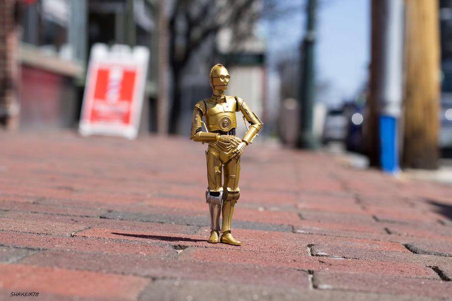 Oh my it's so nice out today. Much nicer then tatoonie. Photooftheday Toyphotography Photography Starwars C3p0 TheGreatOutdoors Newhampshire Toysoutdoors Toycommunity Toyboners TheForceAwakens Rebelscum