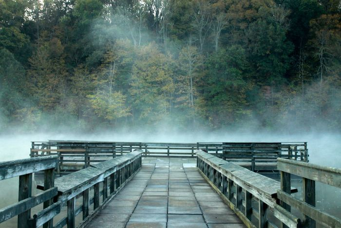 Beauty In Nature Dock Fog Nature Outdoors Railing Sunrise Fog Water EyeEmNewHere