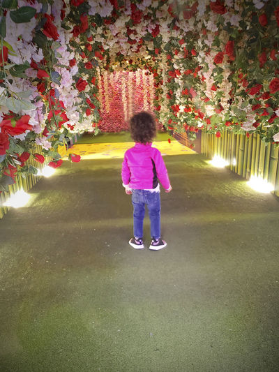 Roses Tunnel Of